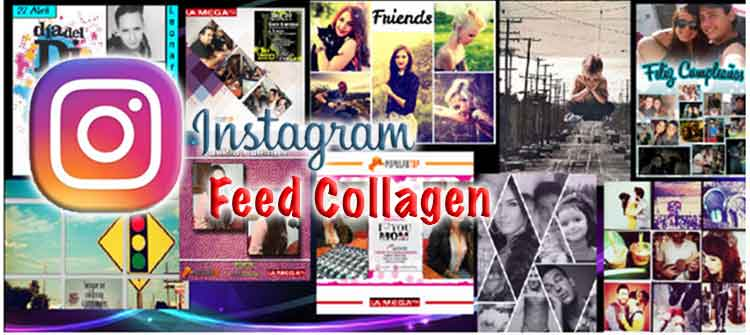 Instagram Feed Collagen